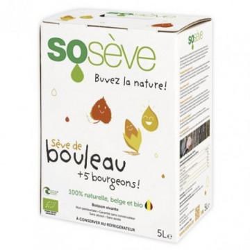 SO SEVE BOULEAU+5 BOURGEONS 5L