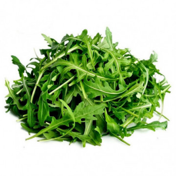 RUCOLA RAVIER 100G (BE) PCE