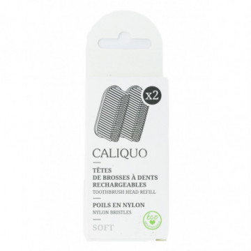 CALIQUO RECHARGE BROSSE A...